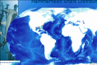 Water depth - Global Marine Environment Dataset