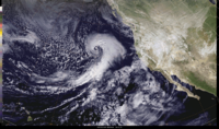 North Pacific Extratropical Hurricane Force Low Centers