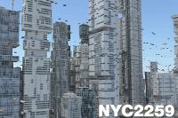 Example NYC2259 2014