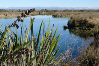 Healthy Catchments Project - OTOP Zone
