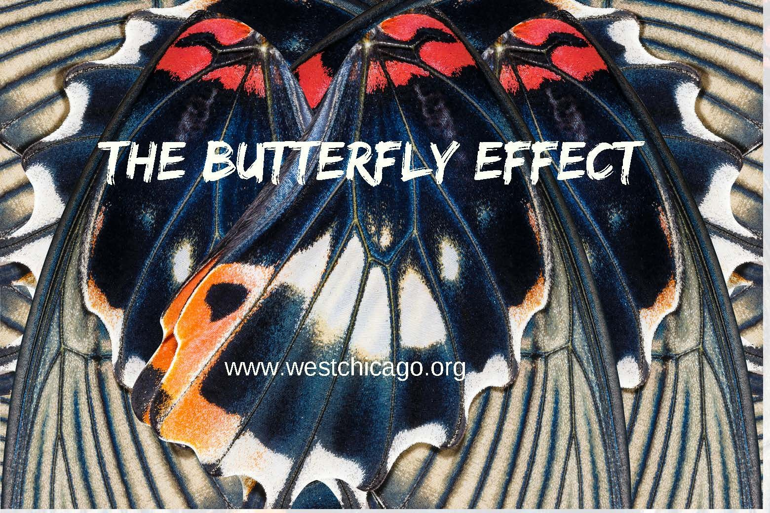 Butterfly Effect Chaos