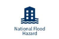national flood hazard firm panels