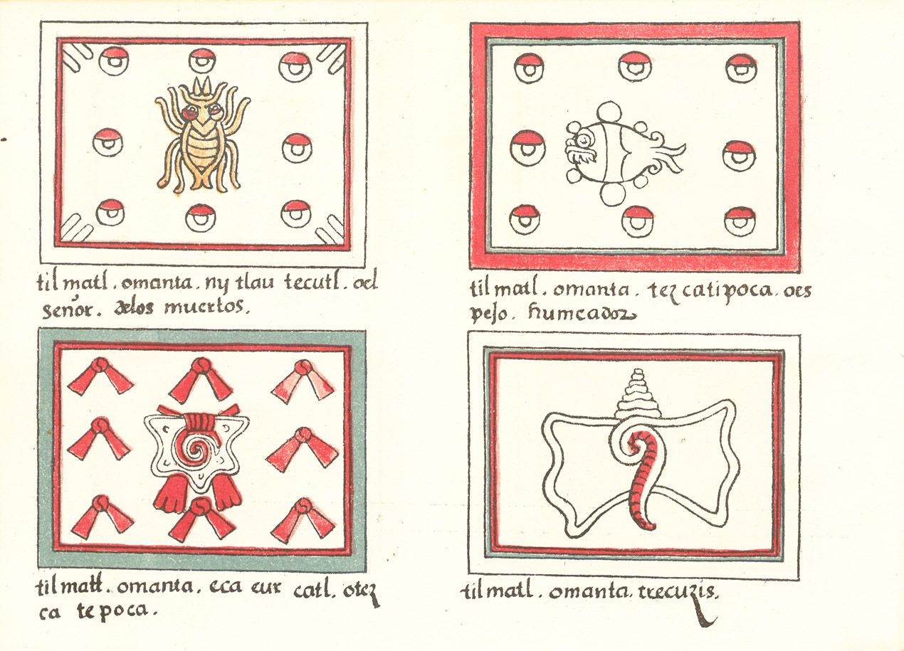 Codex Magliabechiano folio 03v w1270