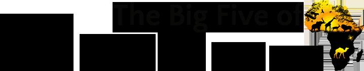 Afrika S Big Five Superstars
