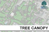 Treecanopy