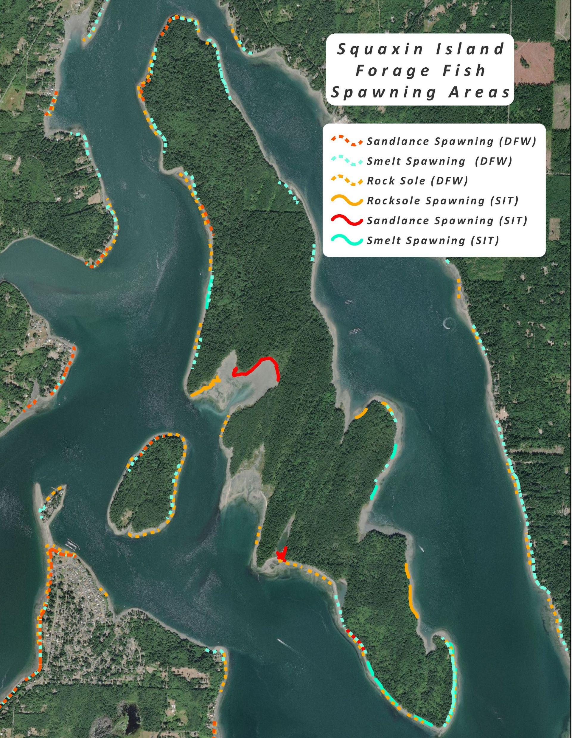 Sea Level Rise (SLR) in the South Salish Sea