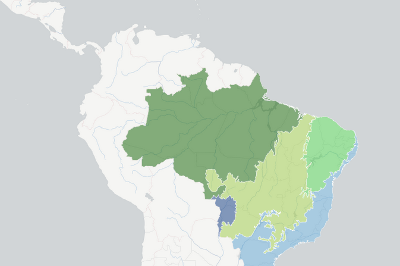 Brazil biomes | Global Forest Watch Open Data Portal