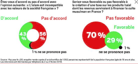 How Should France Address its Muslim Population?