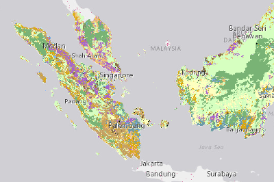 Land Cover - Southeast Asia | Global Forest Watch Open Data