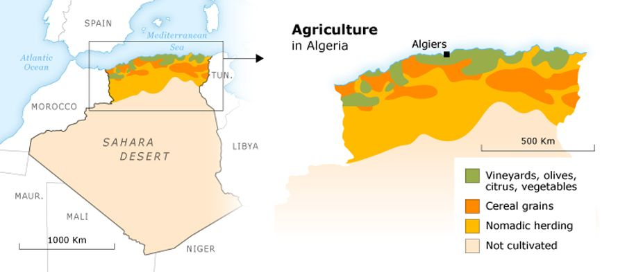 French Imperialist and Colonist Impacts on the Algerian Economy
