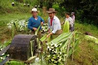 Campo en colombia
