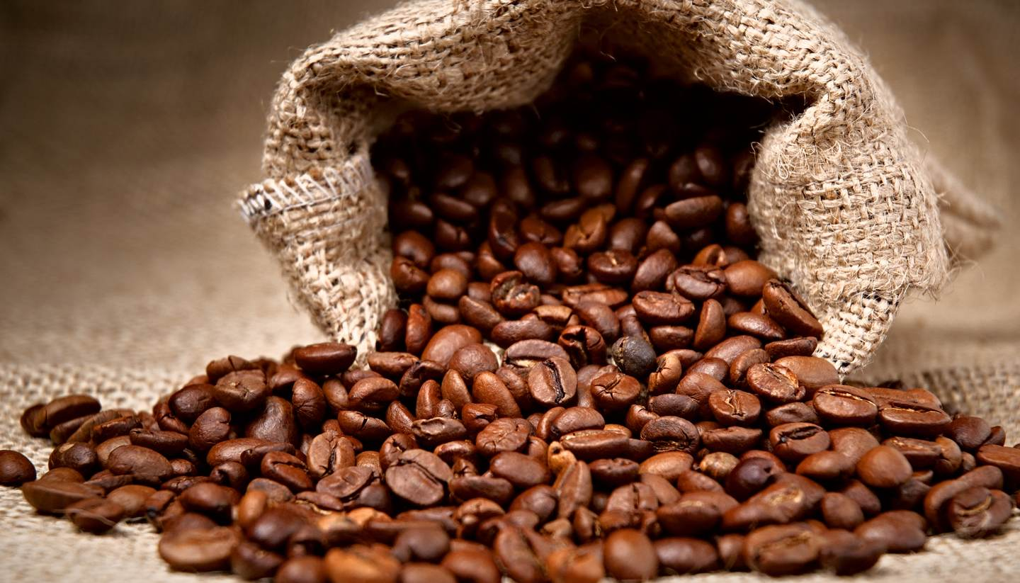 Coffee: From Soil to Savor