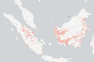 Indonesia oil palm concessions   Global Forest Watch Open