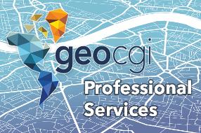 geocgi Professional Services