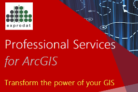 Professional Services for ArcGIS