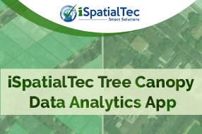 iSpatialTec Tree Canopy Data Analytics Application
