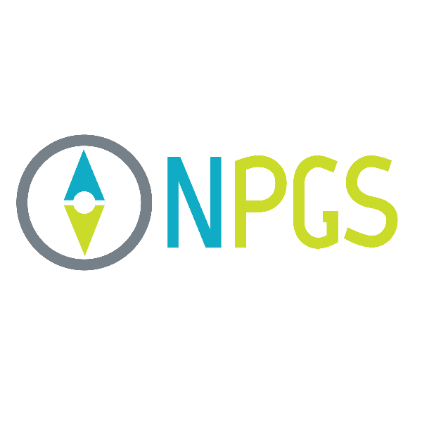 Professional GIS Services