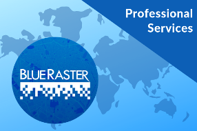 Blue Raster Accelerate Professional Services