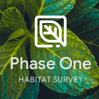 Phase 1 Habitat Survey
